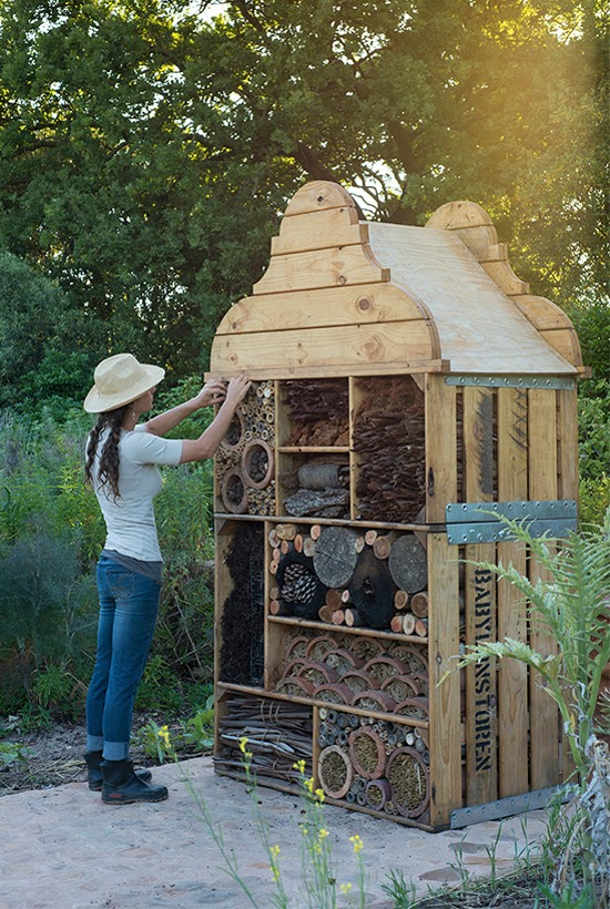 Safari Fusion blog | A room at the Insect Hotel? | Keeping the ecosystem of the Cape Dutch farm Babylonstoren in perfect harmony