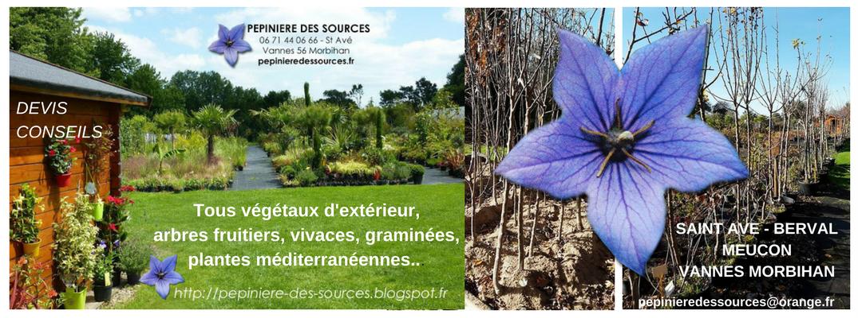Pépinière des Sources Végétaux Vannes 02 97 44 62 23 St Avé Morbihan Bretagne