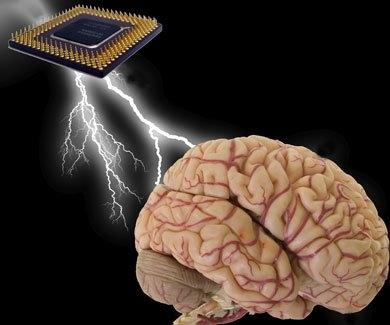 chip cerebro