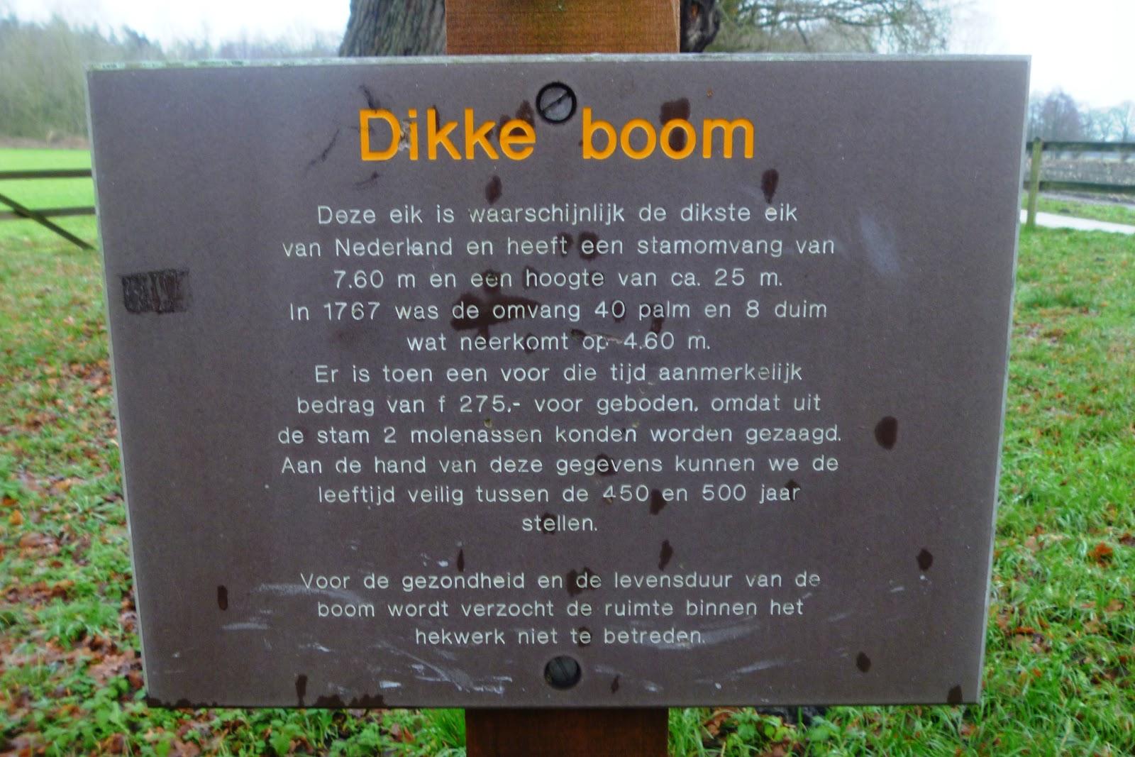 oudste foto nederland