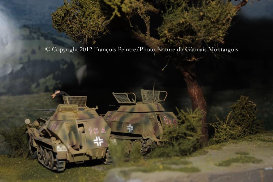 Sd Kfz 250/9 vu arrière