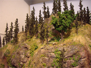 Mountain forest scene details with ground foam, trees, and talus