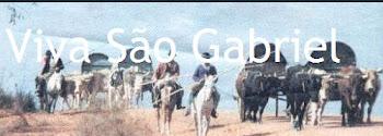 """Blog """" VIVA SÃO GABRIEL"""""""