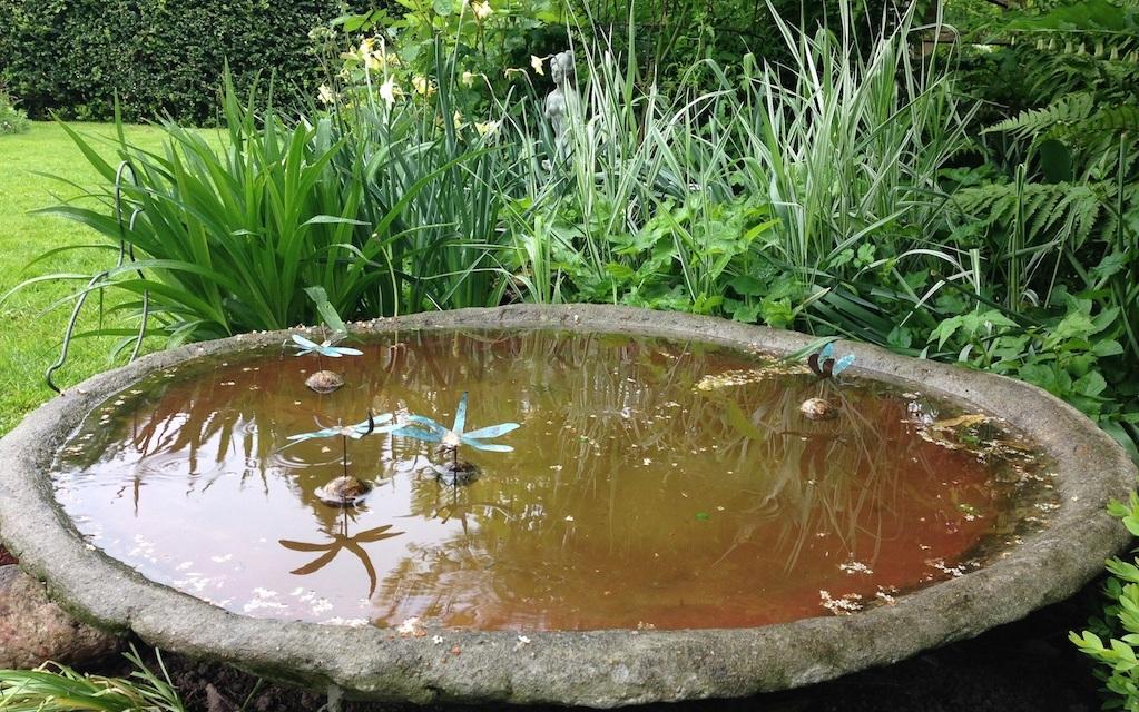 vand i haven hvordan