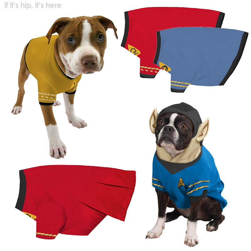 Star Trek Boldly Goes To The Dogs. Beds, Collars, Bowls and Chew Toys.
