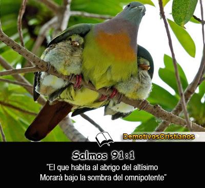 Salmos 91:1