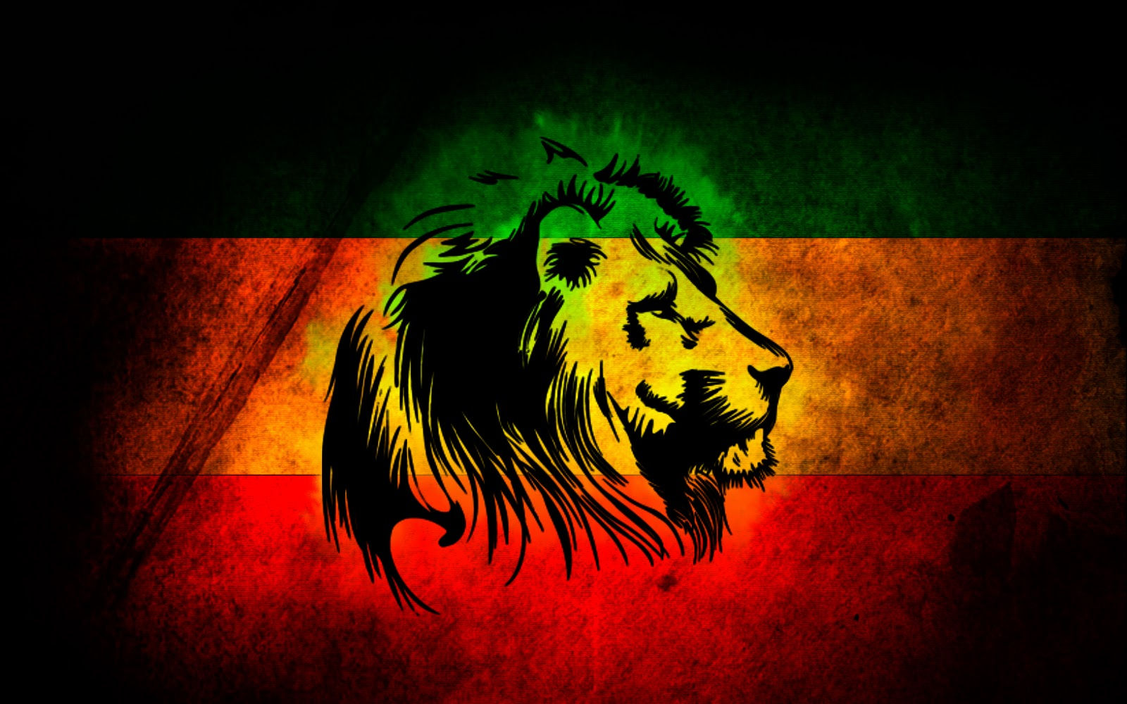 rasta lion wallpapers funny animal