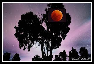 Luna de Sangre. Cementerio Británico.
