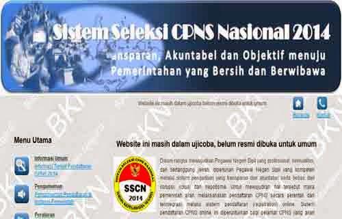 Gambar Screenshoot Website SSCN