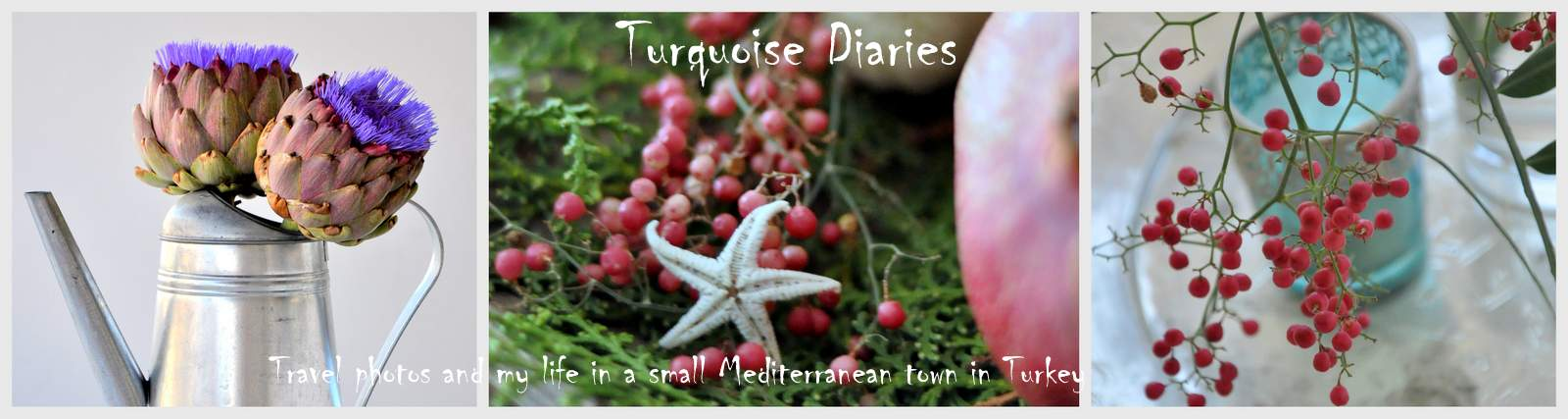 Turquoise Diaries