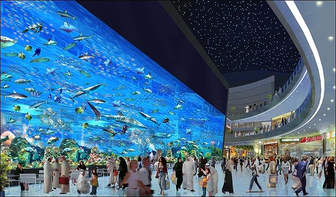 Coupons mall of america aquarium