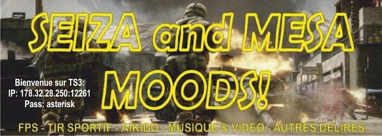seiza and mesa moods