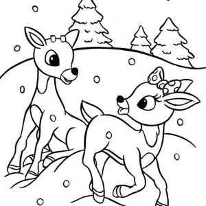 Christmas reindeer colouring pages and printable sheets for Rudolph the red nosed reindeer template