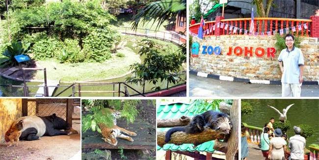 حديقة الحيوان الجميلة