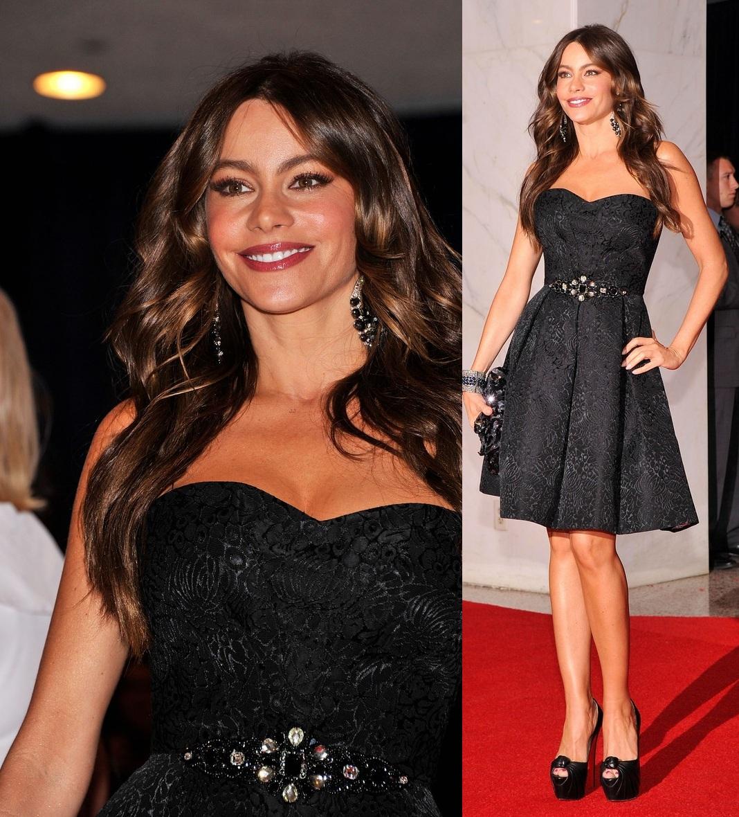 ¿Cuál creeis que es la altura ideal de una mujer? - Página 2 Sofia+Vergara+in+David+Meister+-+2012+White+House+Correspondants+Dinner