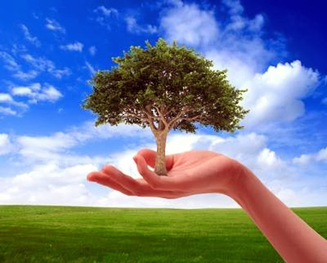 Hindi essay for nature Essay on environment our friend in hindi
