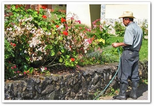 видео урок Все о системах полива в саду