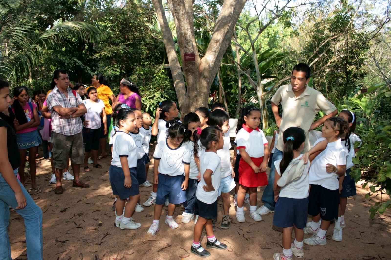 Jardin lucia alcocer acapulco excursi n al jardin for Talleres jardin botanico
