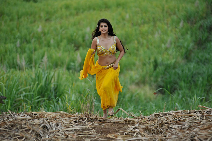 Mogudu Movie Actress Tapsee Spicy Navel Show Photos glamour images