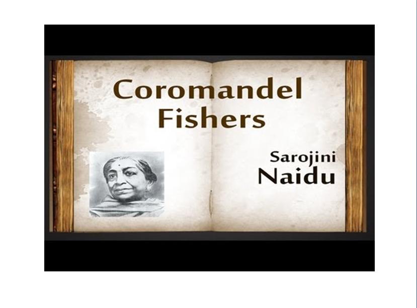 Hashina Ashraf Coromandel Fishers Ppt