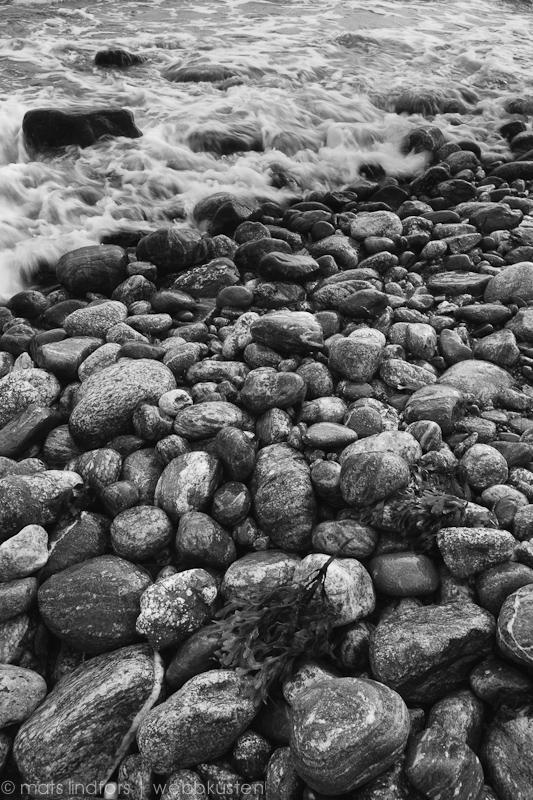 Stenar i svartvitt vid havsstranden