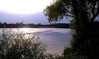 Bild: Es ist ein See zu sehen, auf dem sich die Sonne spiegelt. Im Vordergrund des Bildes steht auf der rechten Seite ein Baum und auf der linken Seite ein Busch. Im Hintergrund kann man einen kleinen gemütlichen Strand erkennen.