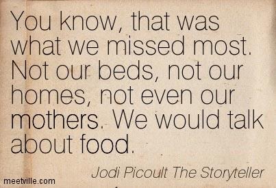 the storyteller pdf jodi picoult