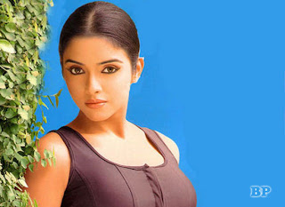 Asin_Thottumkal_Bollywood_4