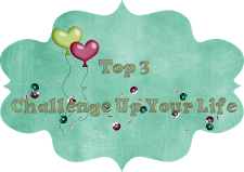 Top 3  - 5/2015 bei Challenge up your life