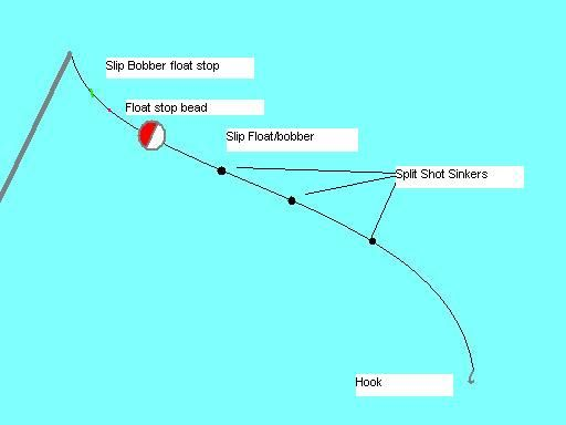 fishing rod hook setup If you plan on surf fishing, youand39ll need to rig your rod a bit differently than you would for other types of fishing since your tackle read more.
