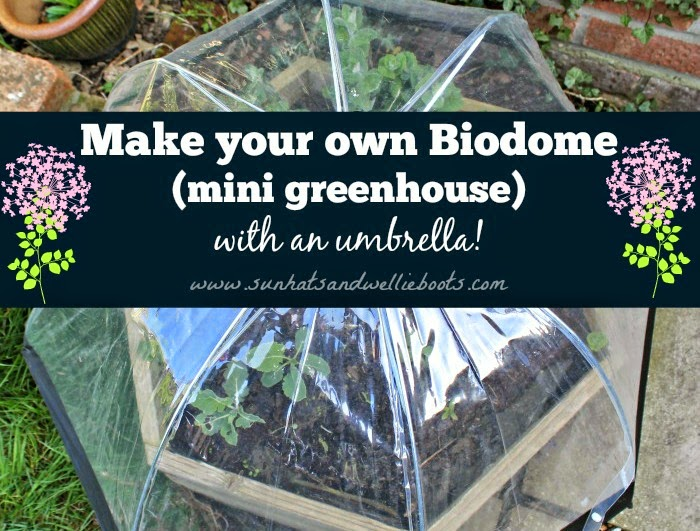 Sun Hats Wellie Boots How To Make Your Own Biodome With