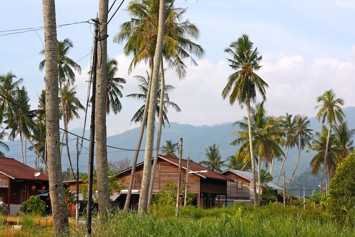 malay kampung houses balik pulau penang