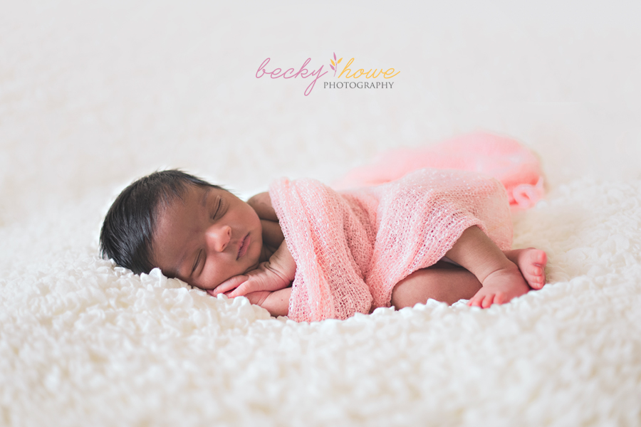 newborn photography sleeping newborn girl pink wrap