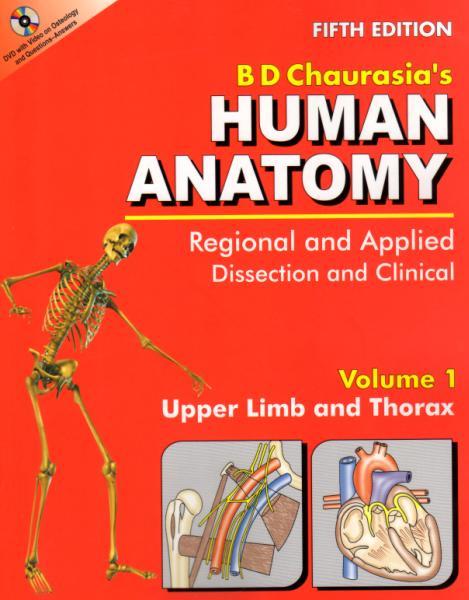 Speed anatomy game online