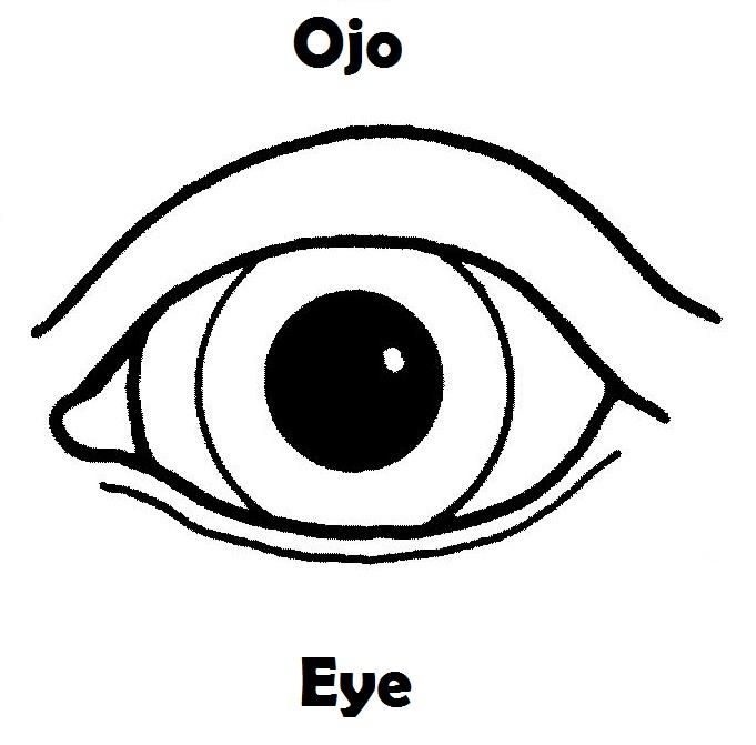 ojo-colorear-ingles-espa%25C3% ...