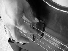 bass guitar pick plectrum