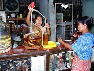 Exotic Food in Burma