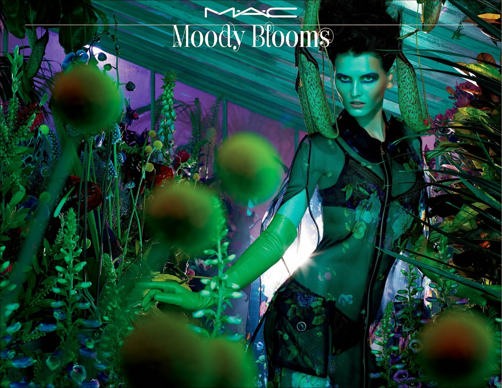mac moody blooms color story and launch date