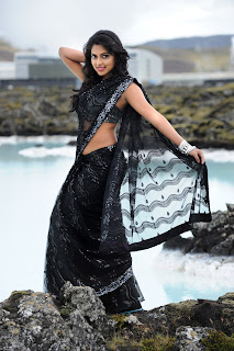 Amala Paul Naayak Photo Gallery Actress