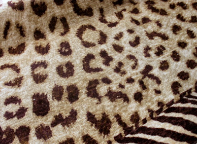 Cheetah Area Rugs, Quality Area Rugs, Animal Print Area Rugs, Safari themed Area Rugs, Rugs For Teens, Rugs For Dorms