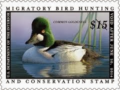"Support Wetland Acquisition & Conservation, Purchase a ""Duck"" Stamp."