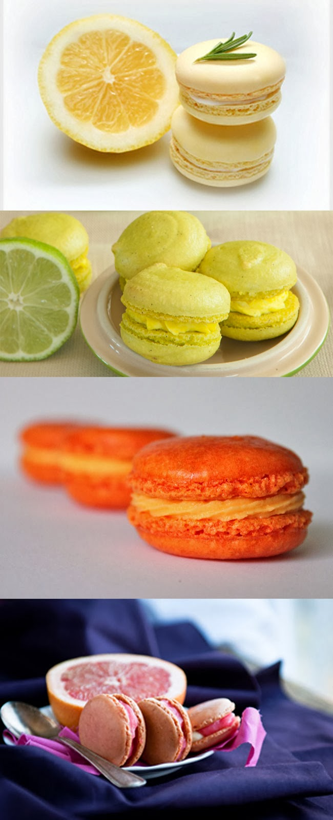 Lemon, lime, orange, grapefruit macarons