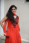 Samatha photos at SSD music launch-thumbnail-4