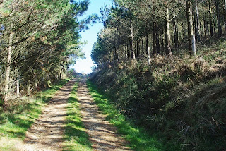 Taramundi, ruta del Ouroso, primeros tramos
