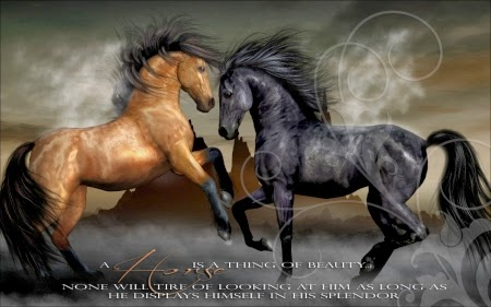 Inspirational Horse Quotes And Sayings. QuotesGram
