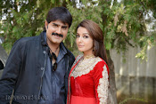 Srikanth New Movie launch Photo Gallery-thumbnail-13