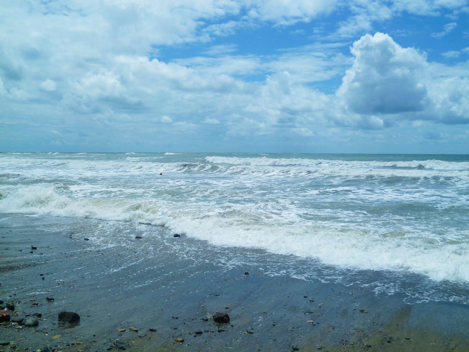 Смотреть фото как пьяная девка сосет на пляже 24 фотография