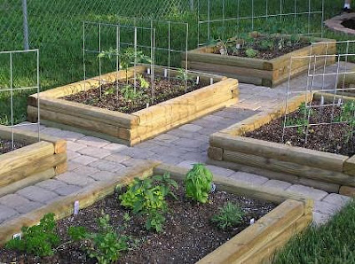 Simple Backyard Vegetable Garden Design Ideas