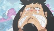 One Piece 598