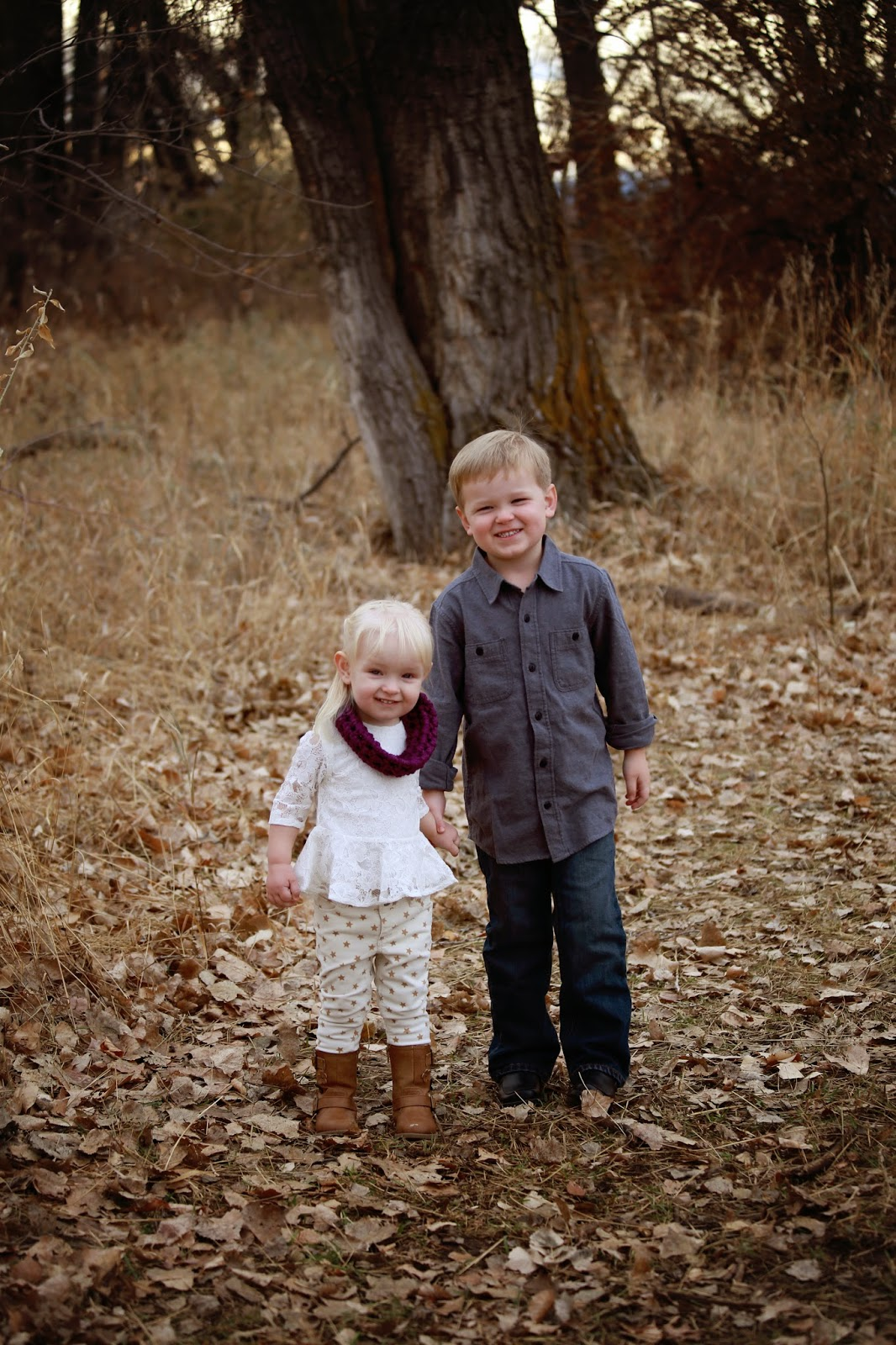Family picture ideas.  Family photos.  Large family picture ideas.  Colorado photographers.  Krista Haffner Photo Denver Colorado.